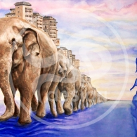ElefantesWEB