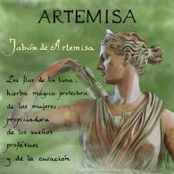 ARTEMISA_finish